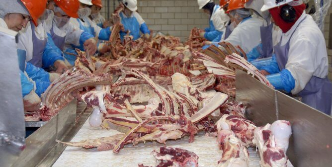 Boycott Meat! PETA Latino and League of United Latin American Citizens Iowa Join Forces