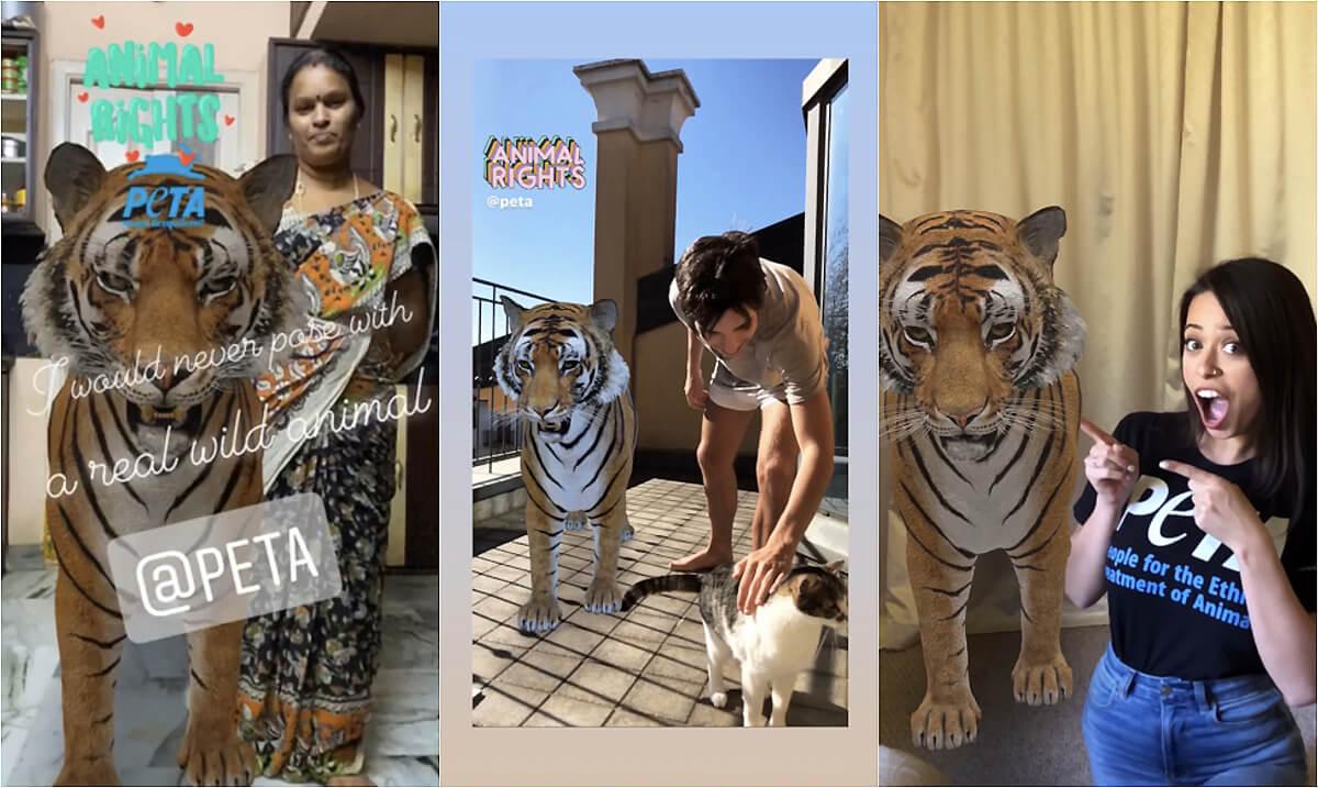 google 3D AR tiger selfie camera filter peta 2020