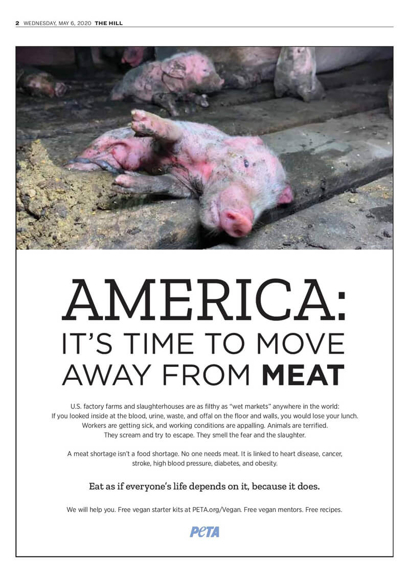 move away from meat peta campaign hits top u.s. newspapers