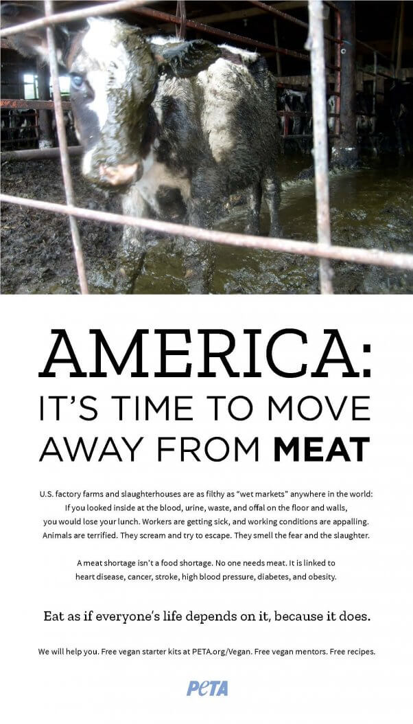 Time to Move Away From Meat