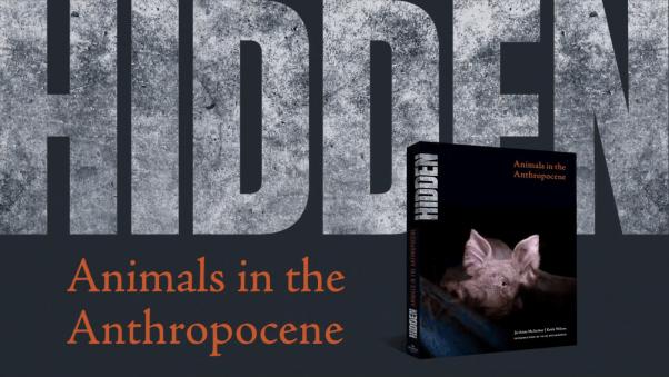 """new book """"HIDDEN: Animals in the Anthropocene"""""""