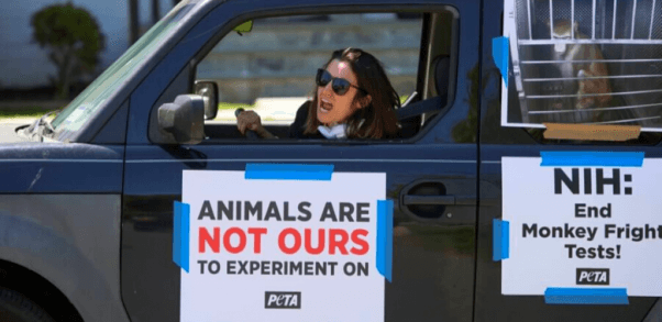 NIH drive-by for monkey fright tests