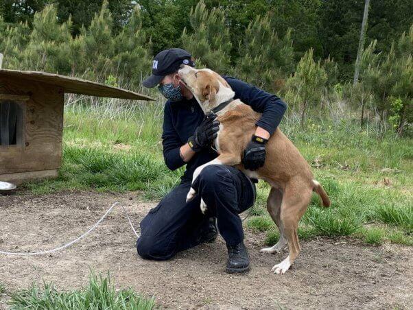 PETA fieldworkers love helping animals