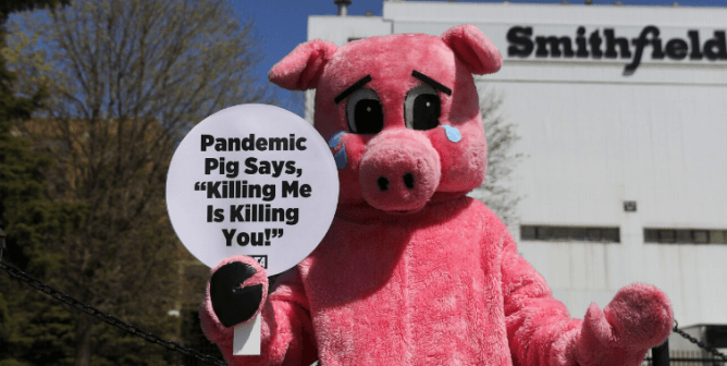 Shareholder Activism: PETA Takes a Seat at These Meatpackers' Tables