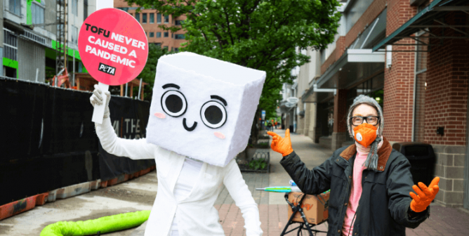 For Once, Be a 'Blockhead': Order PETA's Exclusive Tofu Costume Today!
