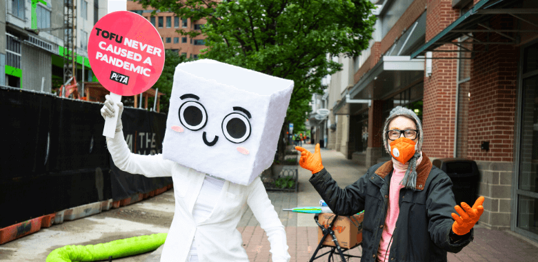 Tso Halloween 2020 PETA's Tofu Costume Is Perfect for Halloween 2020 | PETA
