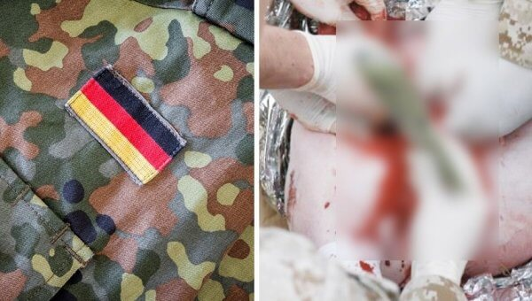 The German Military Mutilates Live Pigs in Trauma Training—Take Action!