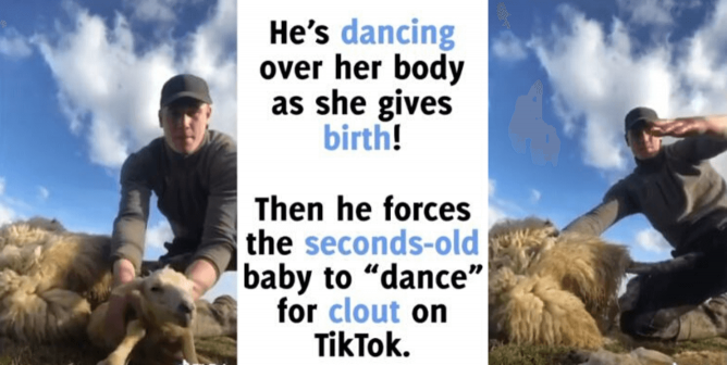 WATCH: PETA Calls Out Farmer for This Video on TikTok
