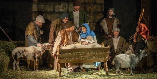 Animals in Live Nativity Scenes