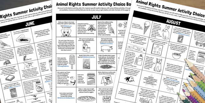 Summertime Kindness to Animals Activity Choice Boards