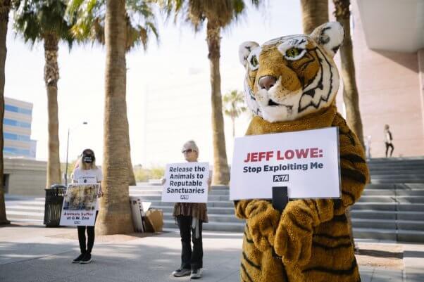 PETA Protest of Tiger King villain Jeff Lowe