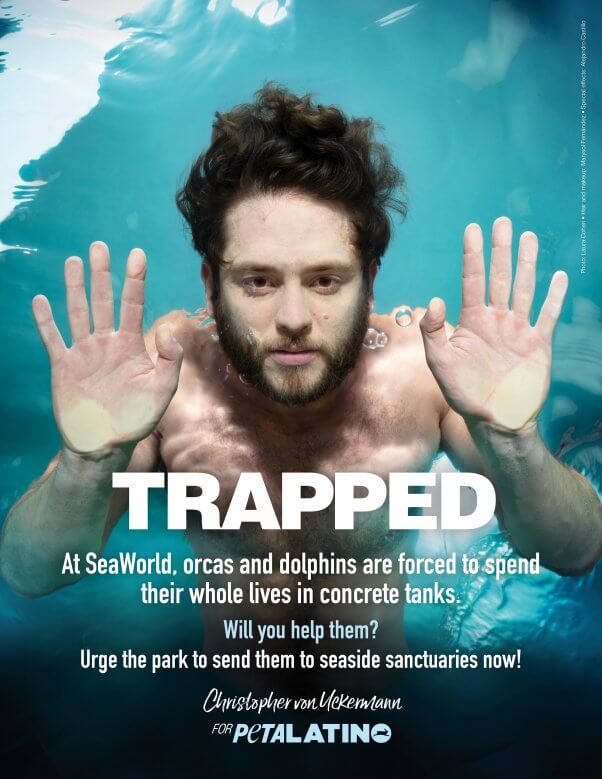 Christopher von Uckermann in a petalatino ad for the orcas and dolphins at seaworld