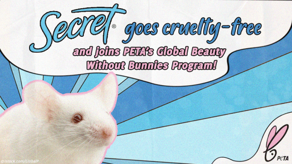 Secret Deodorant Commits to Not Testing on Animals