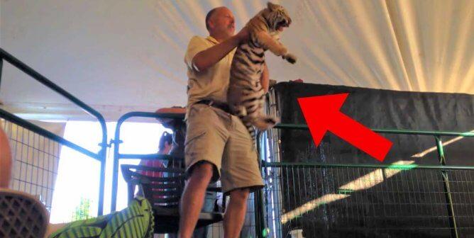 'Tiger King' Villain Tim Stark Keeps Hitting New Lows, and PETA Keeps On Winning