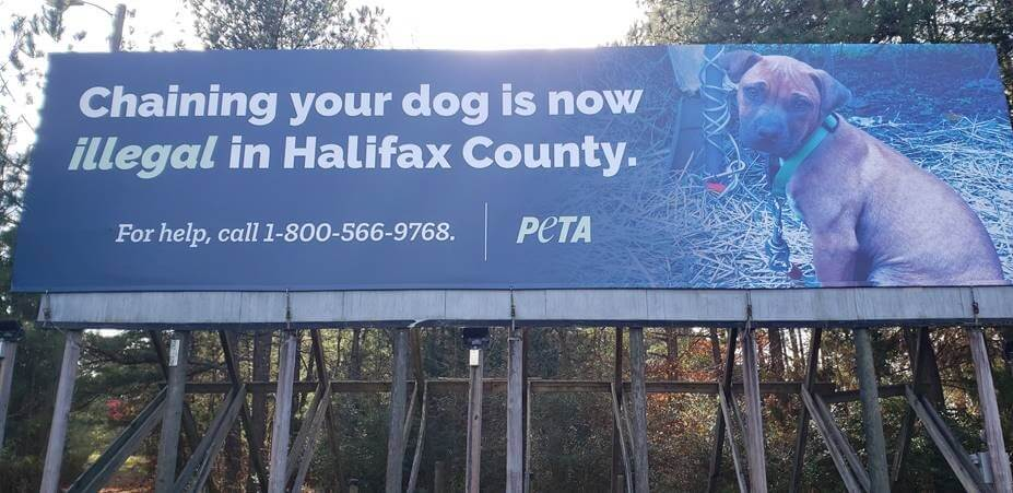 2020 Halifax County Ban on Unattended Tethering of Dogs