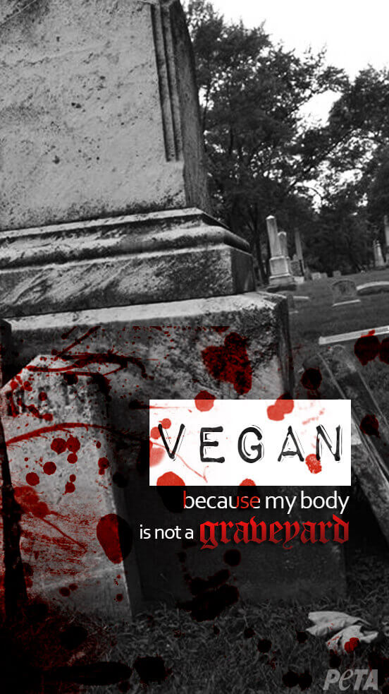 """A """"VEGAN because my body is not a graveyard"""" phone wallpaper that shows a graveyard"""