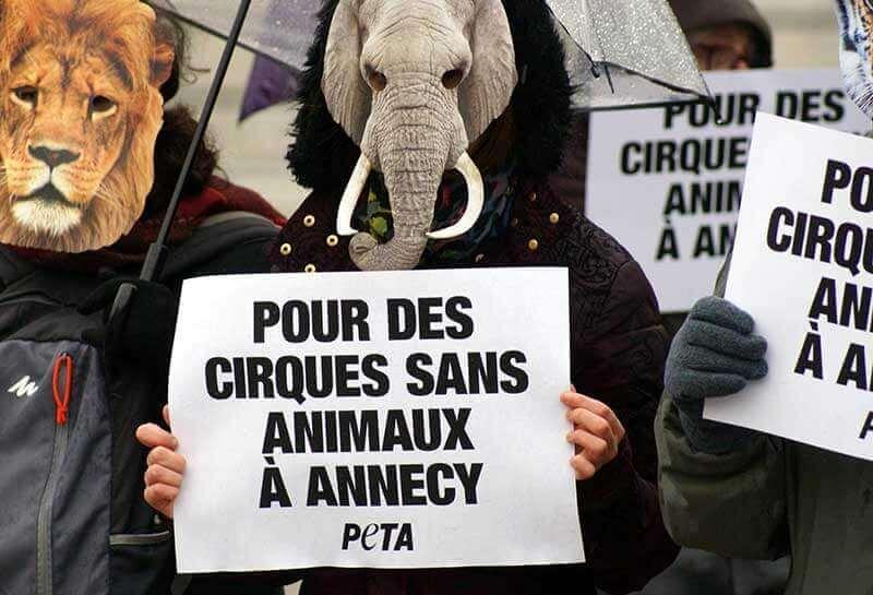 PETA France Circus Demo