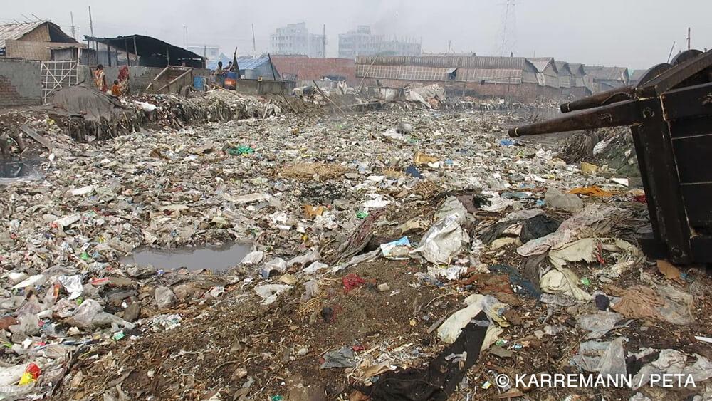 Bangladesh leather distruction