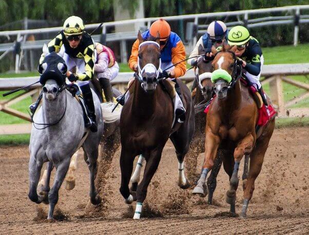 Kentucky Derby Bettors, horse racing
