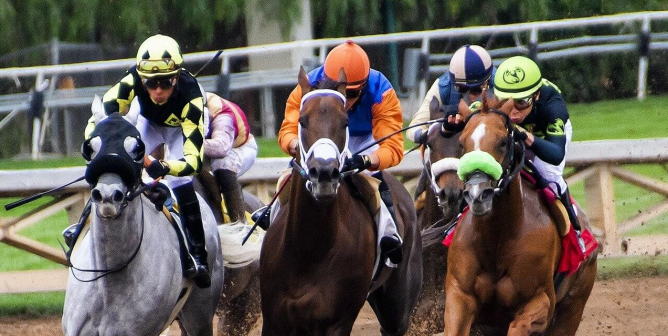 PETA Becomes a Shareholder in 4 Racetrack-Owning Companies