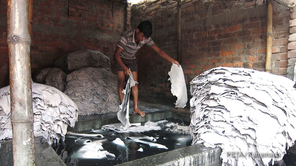 leather tannery