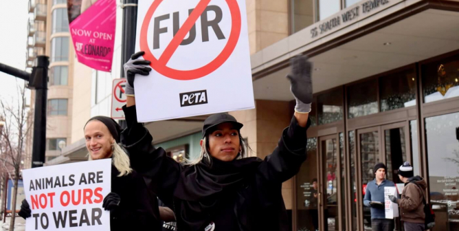 VICTORY: Nordstrom Bans Fur and Exotic Skins!