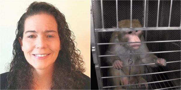 peta neuroscientist dr katherine roe slams elisabeth murray monkey fright night experiments