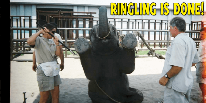 Ringling Bros. Exits Elephant Game, Hands Over So-Called 'Conservation Center'