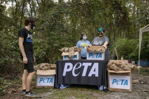 PETA Donates Fur to Sanctuary