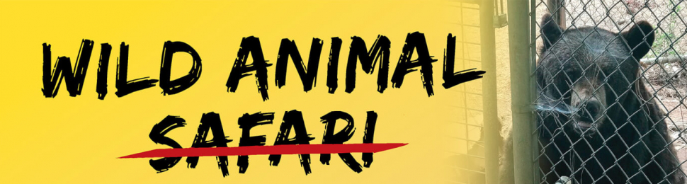 Wild Animal Suffering