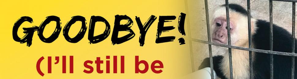 Goodbye! (I'll Still Be Stuck Here.)