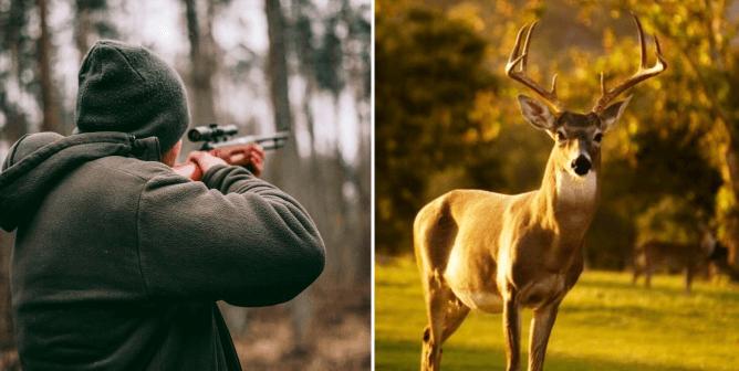 PETA France's Letter to Nacon: Hunting Simulator 2 Is Speciesist!