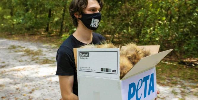 PETA donates fur to wildlife rescue