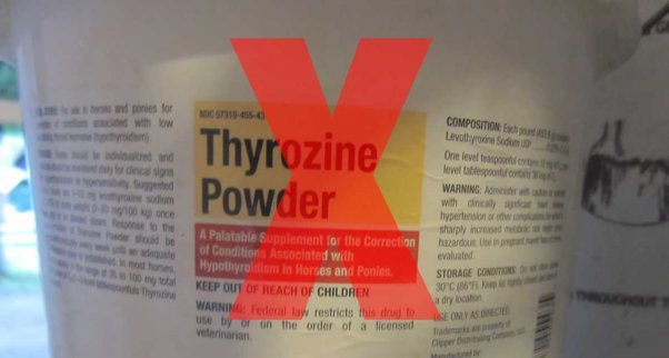 horse racing thyroxine