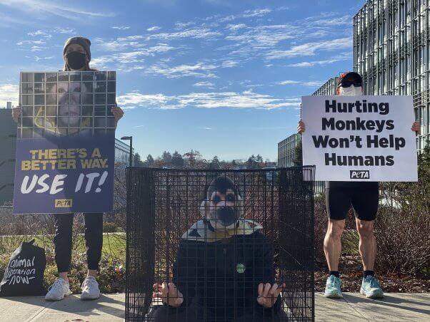PETA Protest for Primates at University of Washington