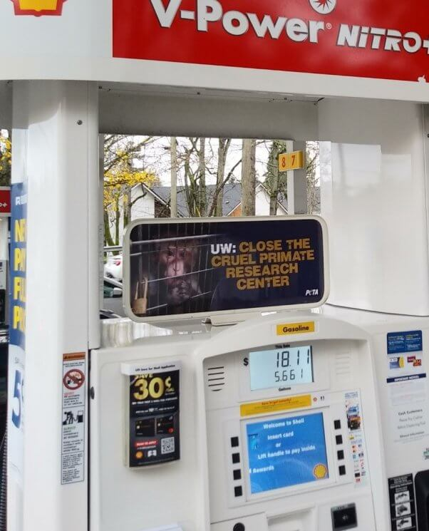Gas station ad calling for the closure of the University of Washington primate research center
