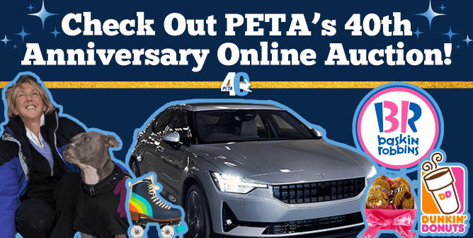 11 Things You Can Win by Bidding in PETA's 40th Anniversary Auction