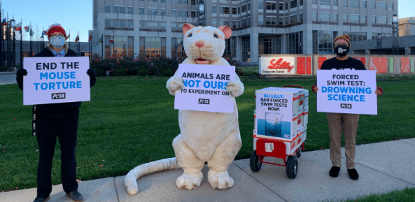 Giant 'Rat' Leads Eli Lilly Protest Against Forced Swim Test