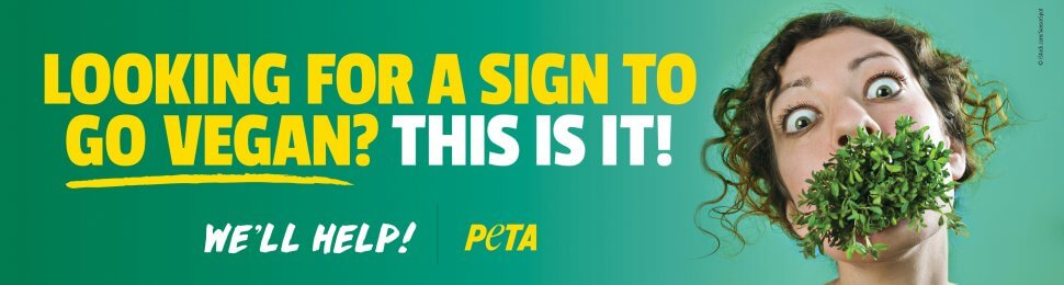 Looking For A Sign To Go Vegan? This Is It!