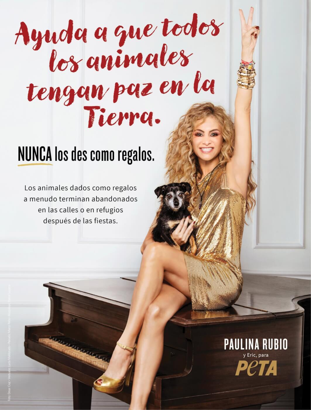 Print   PSAs   Media Center   PETA