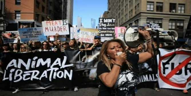 PETA's 2020 Outstanding Activists Are the Inspiration We Need Right Now
