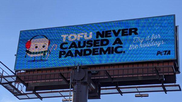 Tofu Never Caused a Pandemic, Holiday, Winter, Billboard, Ad, Savannah, Georgia