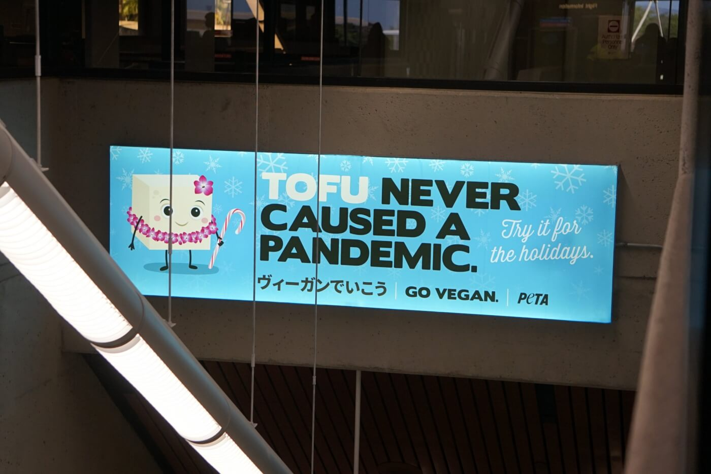 'Tofu Never Caused a Pandemic' at the Honolulu Airport
