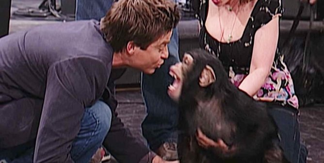 SNL: Jason Bateman Introduced Us to Mikey—Here's the Chimpanzee's Real Story