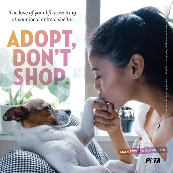 Leah Lewis and Her Dog Floyd in an Ad for PETA