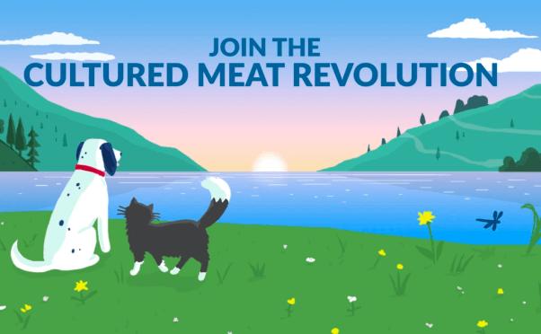 Cultured meat revolution