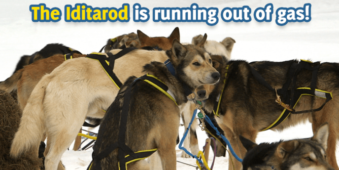 Victory for Dogs! ExxonMobil to Drop Iditarod After Massive PETA Campaign