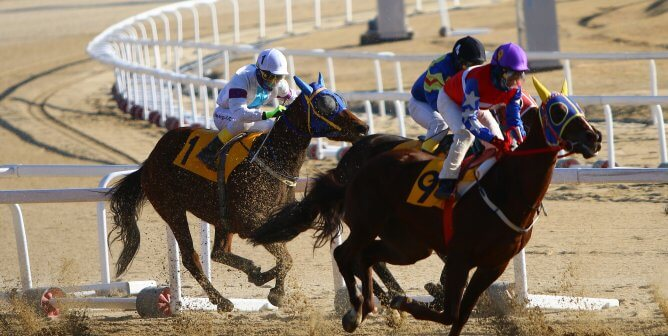 horse race dirt track