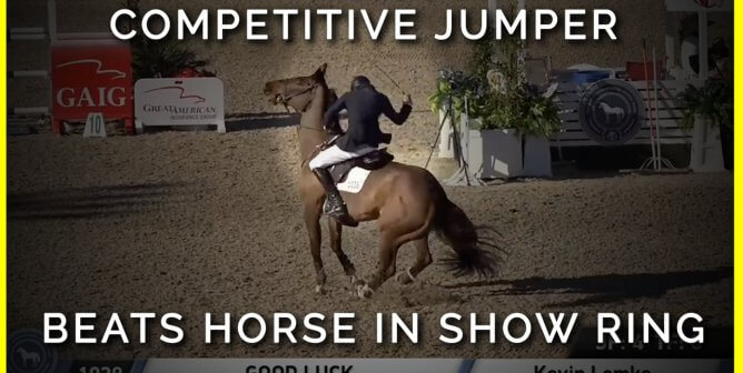 Competitive Jumper Who Publicly Beat Horse Is Fined and Suspended