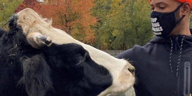 Spotlight: Meet Author and Vegan Activist Stewart Mitchell